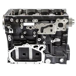 T412667 - Short block 1204E Series