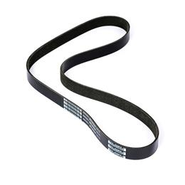 3802621 - Serpentine belt - 55in