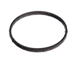 CH12165 - Thermostat seal
