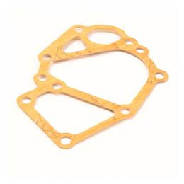 145996900 - Water pump gasket
